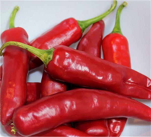 Guajillo Pepper Powder