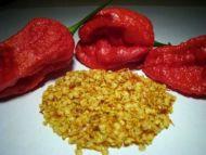 1 Gram / 200 Bhut Jolokia Seeds